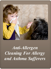 houston Texas carpet anti allergen steam cleaning