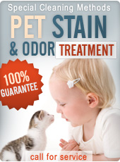 Pet stain and odor removal Houston TX